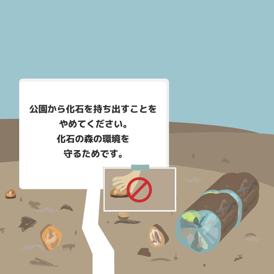 社会的証明の化石の看板の画像